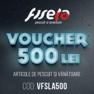 Voucher pentru Cadou 500