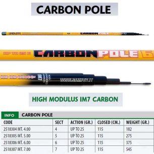 Varga Carbon Lineaeffe Tele Carbon 6m 25g