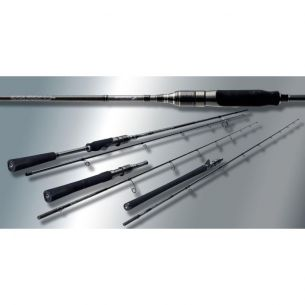 Lanseta Casting Sportex Black Arrow G3 2.55m 100g 2 Sect